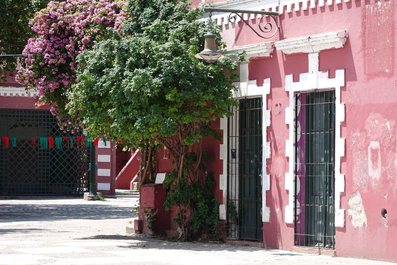 Paseo de las Artes in Güemes neighbourhood