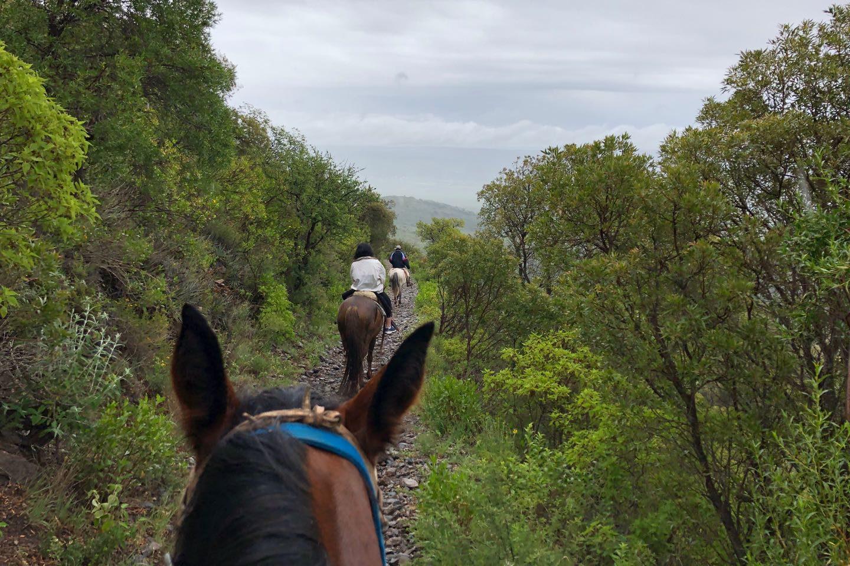 Cabalgata al Cerro Las Gemelas en el complejo Agua de Los Palos.