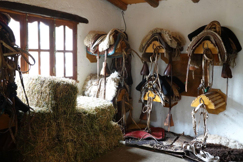 Monturero in Agua de los Palos. Horseback riding office.