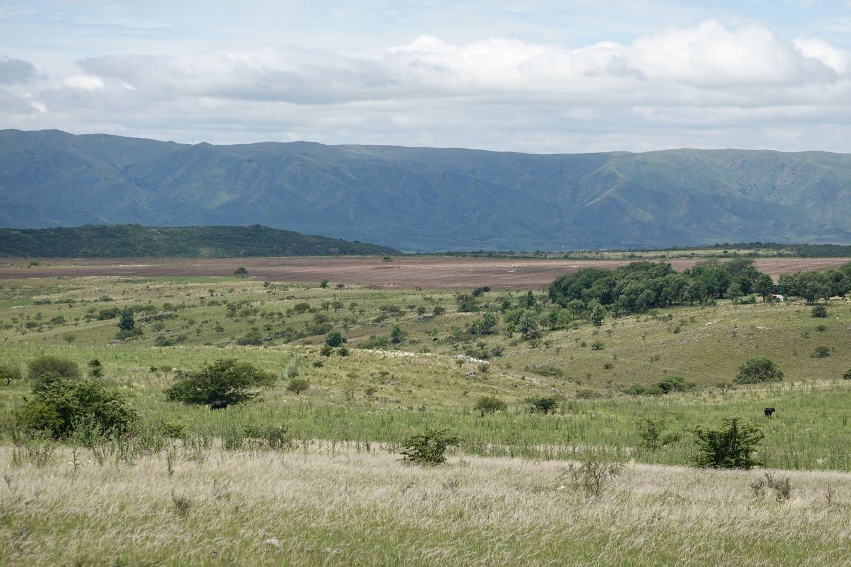 Pampa de Olaen on the way to the Cascada de Olaen from La Falda.