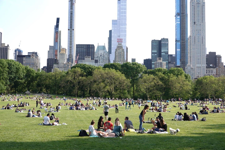 Mejores atracciones del Central Park. Sheep Meadow.