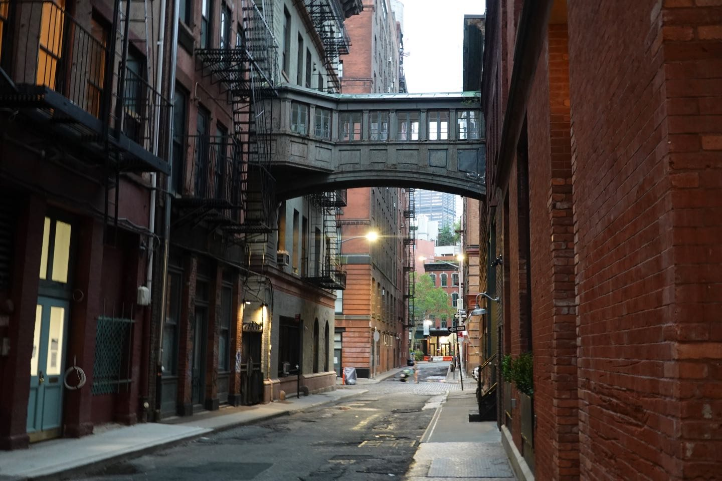 Staple Street Skybridge en Tribeca
