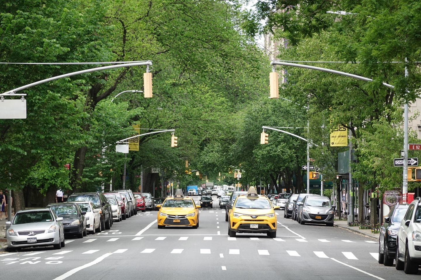 Best walks on NYC. The 5th Avenue next to the Central Park.