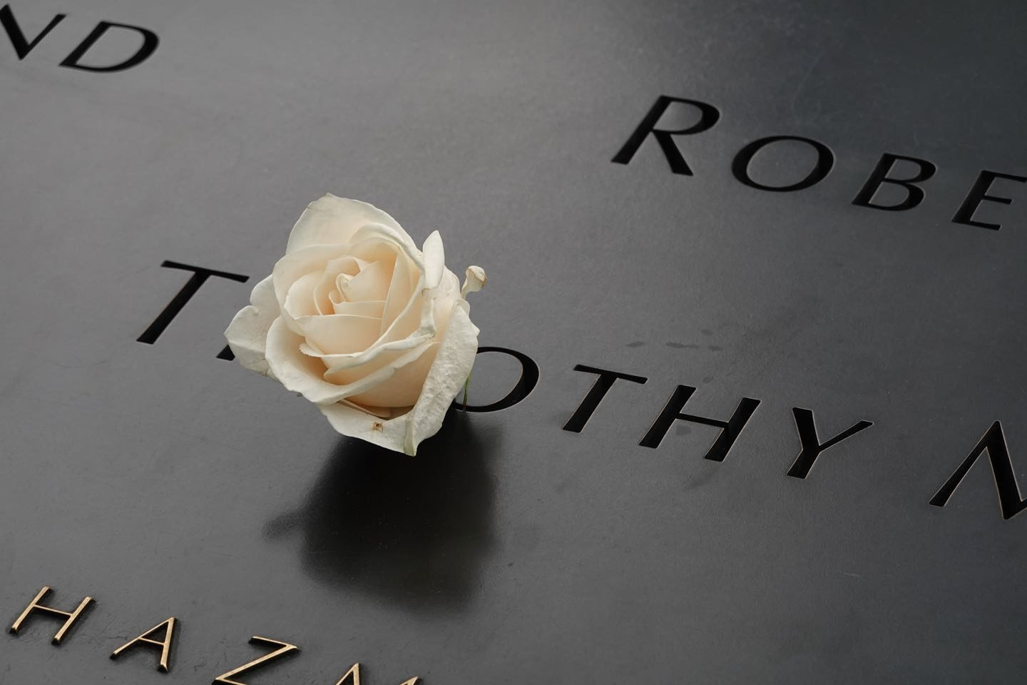 Rose on 9-11-Memorial Victims