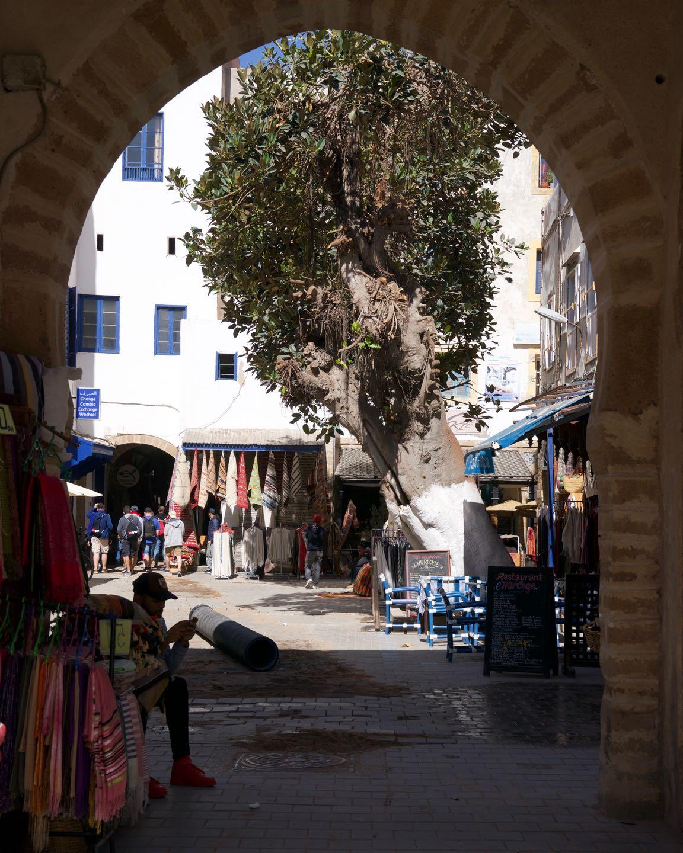 Hermosos arcos y callejones en la medina de Essaouira